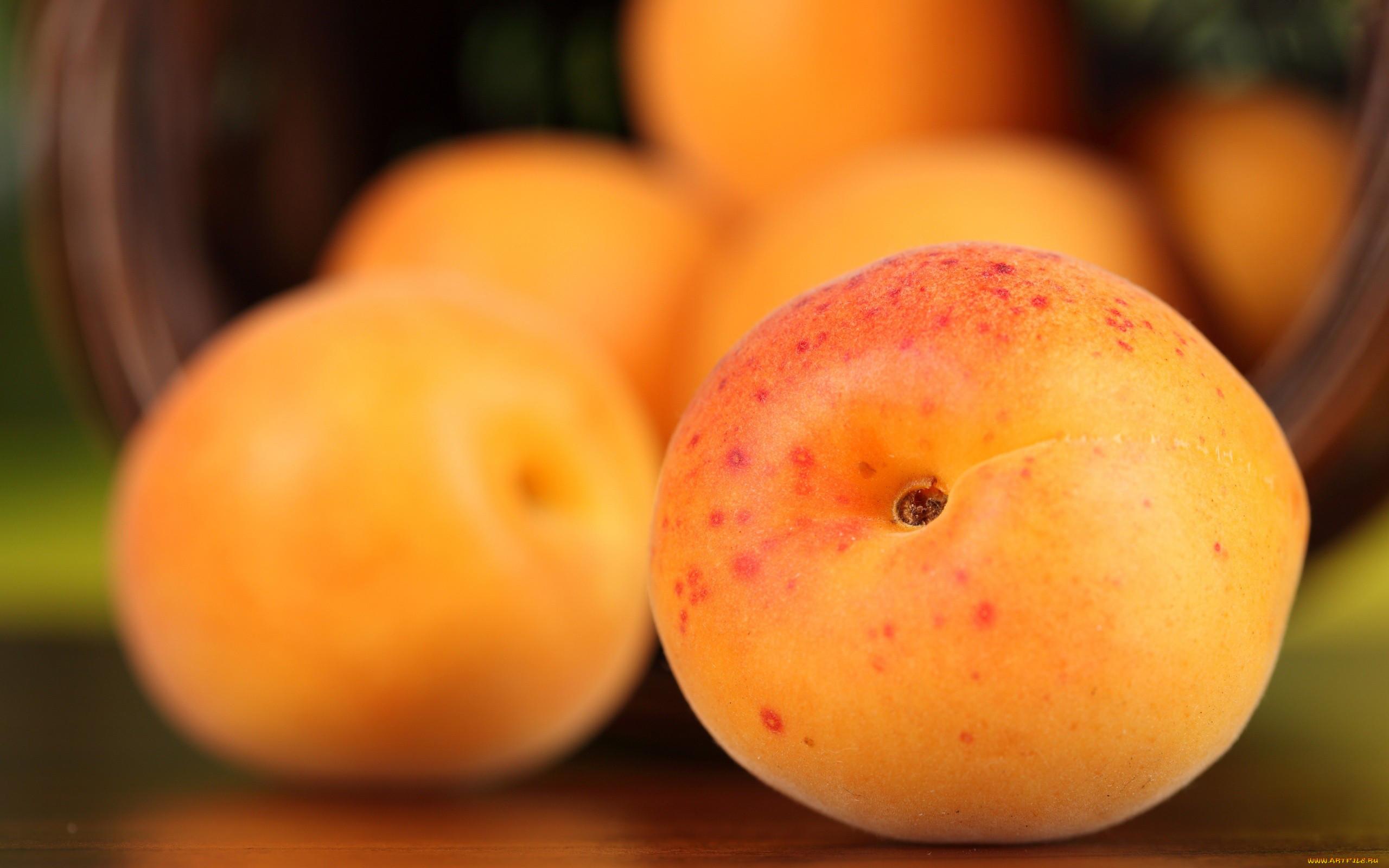 Картинки абрикос и апельсина